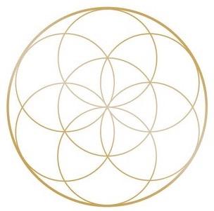 Golden Seed of Life Golden Bay Iridology